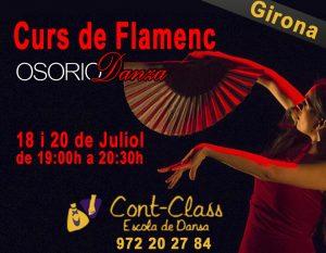 Curso Flamenco Girona Julio 2017
