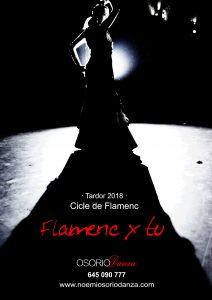 cicle de flamenc; Flamenc x tu