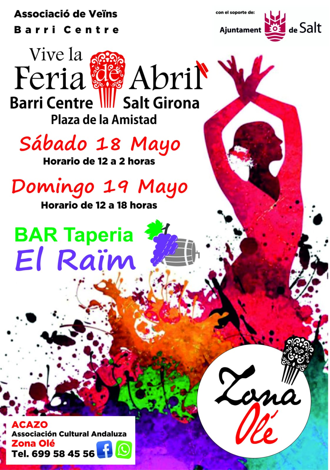 Feria Abril Salt zona ole