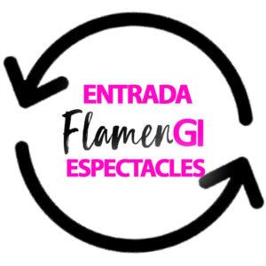 FLAMENGI ESPECTACLES